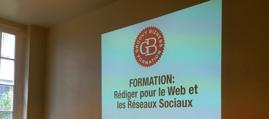 formation rédaction web et réseaux sociaux pour PFI