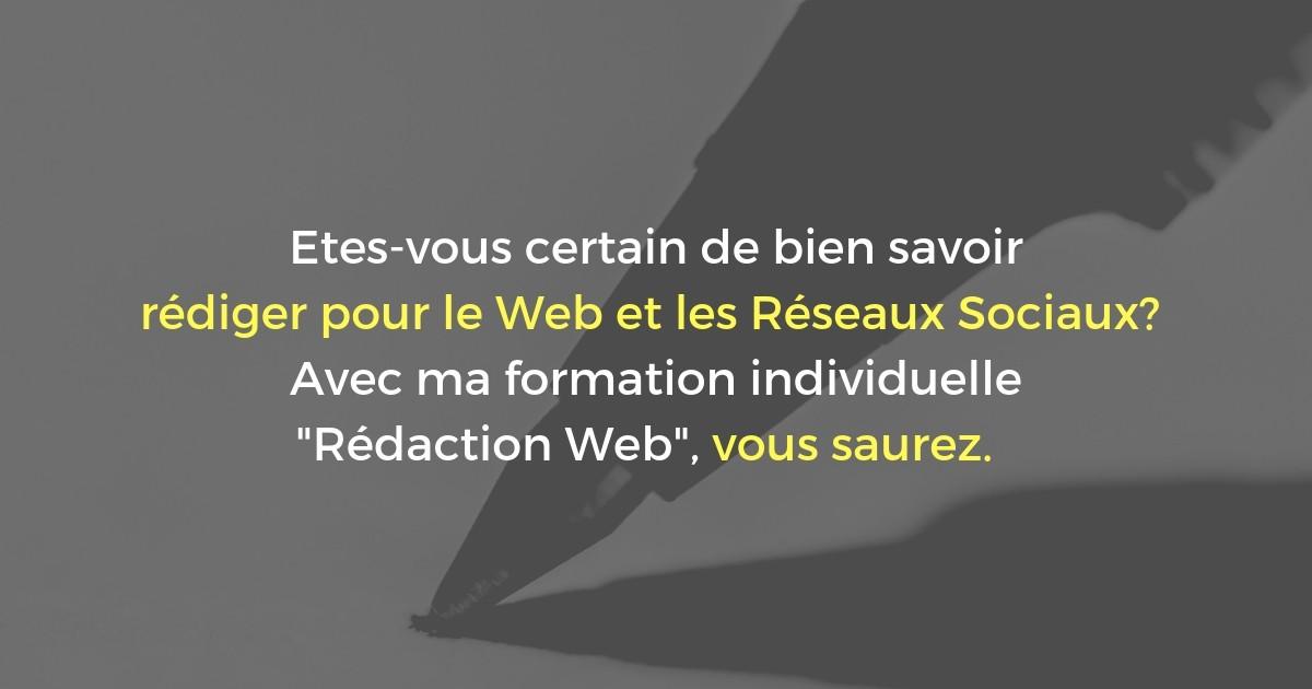 Formation Rédaction Web et Réseaux Sociaux à Lyon (2 jours)