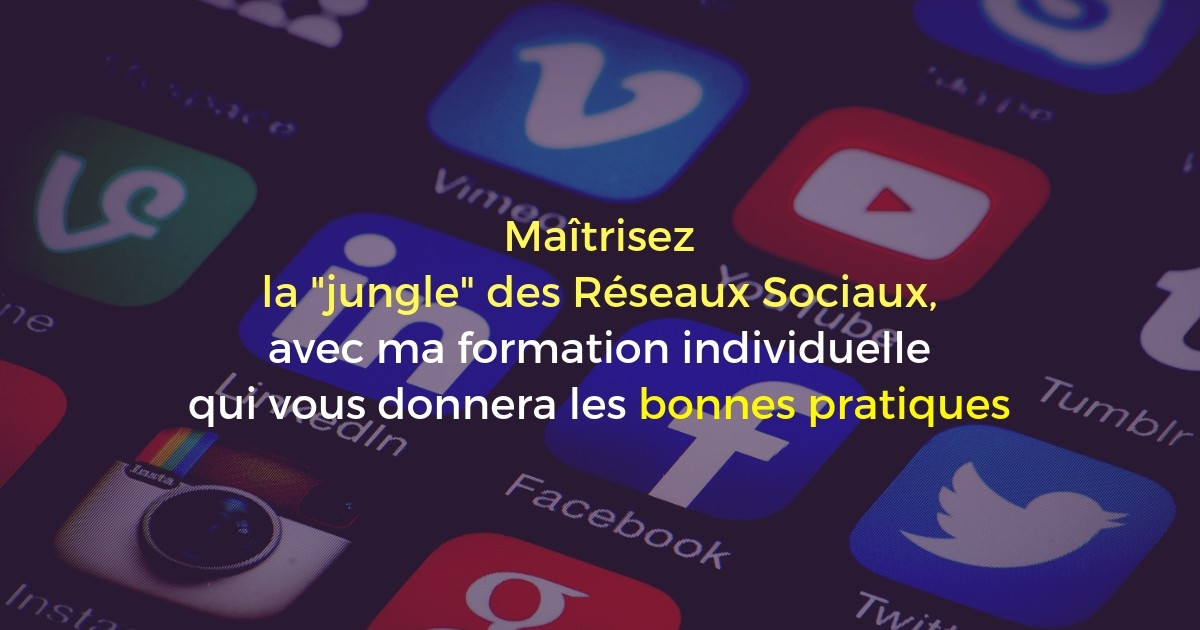 Formation Réseaux Sociaux Panorama à Lyon (2 jours)