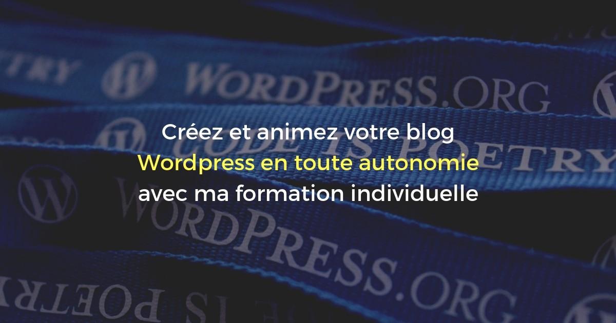 """Formation Wordpress """"Créer et Animer son Site"""" à Lyon (2 jours)"""