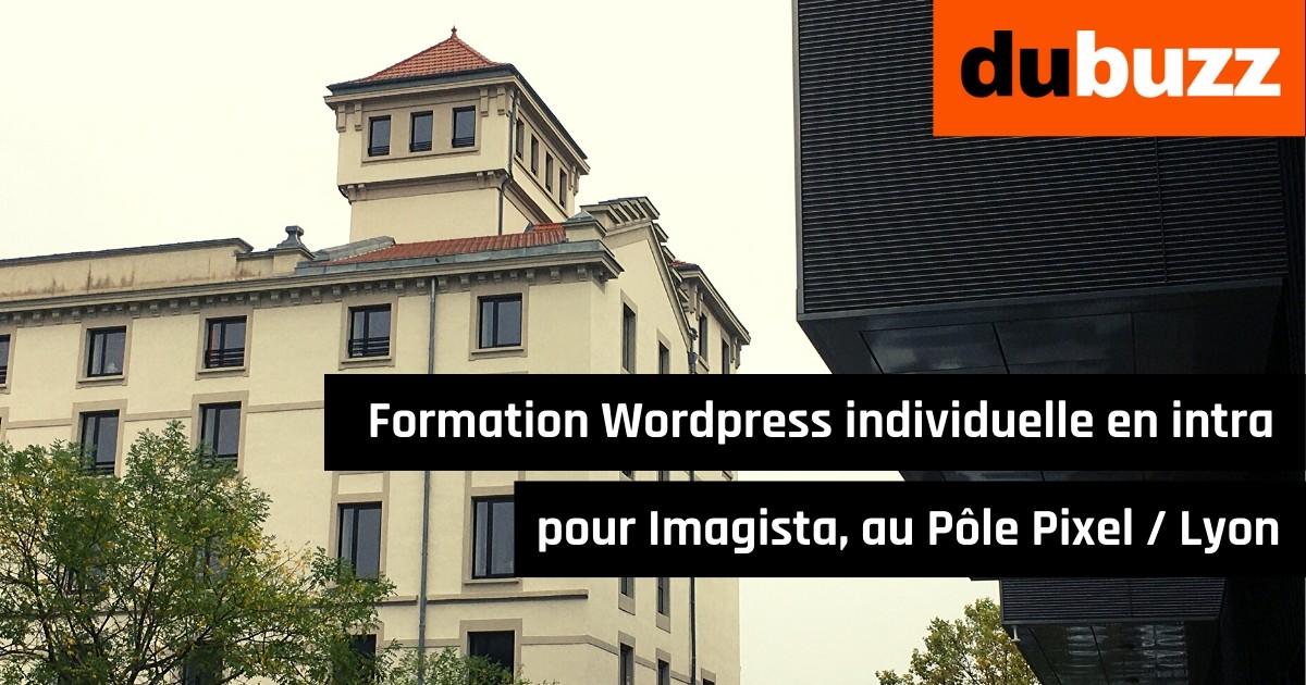 Formation Wordpress individuelle en intra pour Imagista, au Pôle Pixel, Lyon