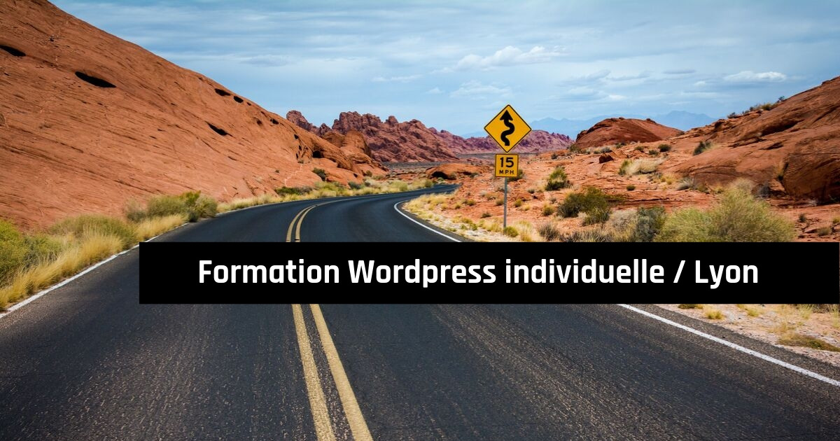 formation individuelle Wordpress à Lyon